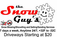 the Snow Guys -  Snow Blowing / Shovel & Salting Services