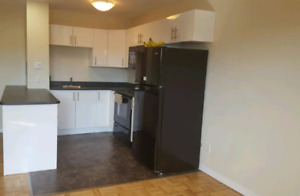 All INCLUDED @ $595/mnth for 1 room in a 2bedroom furnished apt