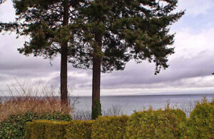 Qualicum Beach 3Br Ocean View Home for Rent