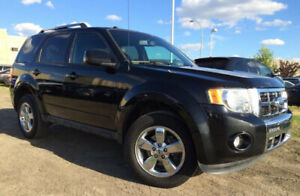 2011 FORD ESCAPE XLT - ACCIDENT FREE