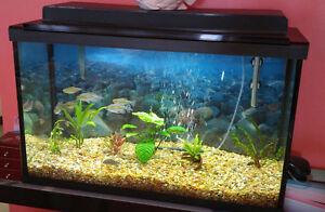 Superbe aquarium Floval 30 gallons toute équipée a vendre!