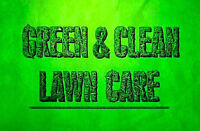 Lawn Spring Clean-up!