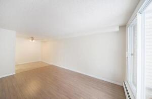 STUDENT SPECIAL - Quiet Building Close to Southgate Mall Edmonton Edmonton Area image 3