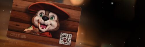 Great Wolf Lodge Gift Certificate $500 Value Please Read Details!