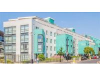 Stunning 3 bed 2 bath in a private development on Drayton Park N5