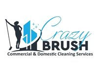 domestic and commercial cleaning service