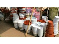 PLANT POTS & TUBS & ANY PLANTS (I WILL COLLECT)