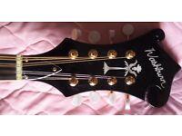 Washburn M1SDLB Mandolin with gig bag