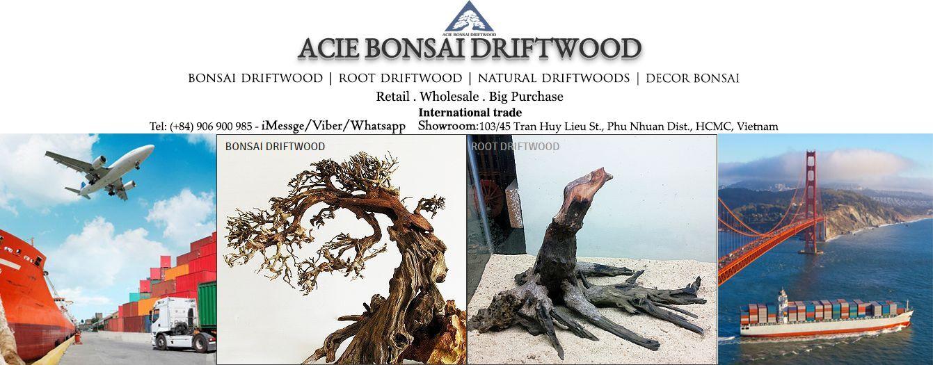 Acie Bonsai Driftwood