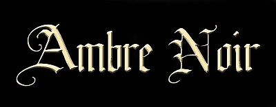 AMBRE NOIR PERFUME OIL DARK AMBER EARTH VANILLA LEATHER SPICE JASMINE GOTHIC