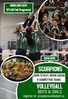 Scorpions Youth Volleyball Fall Programs