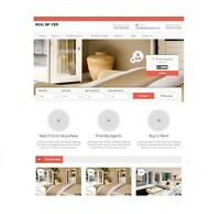Professional Web Design and Development in Low Price / Cost