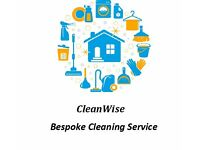 CleanWise Domestic Cleaning Services and Ironing