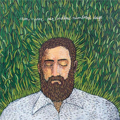 IRON AND WINE OUR ENDLESS NUMBERED LP VINYL NEW 2009 33RPM