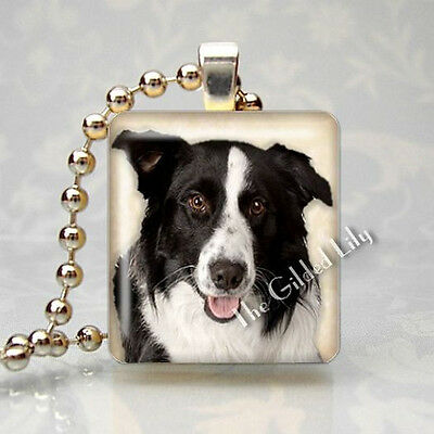 BORDER COLLIE DOG BREED PUPPY - Scrabble Tile Altered Art Pendant Jewelry Charm