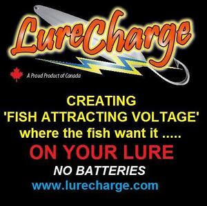 Fish are naturally attracted to low levels of voltage.