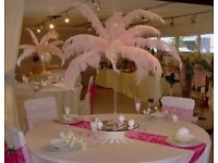 Chair Sashes Bow Hire 50p Fish Bowl Vase Hire £4 Fruit Display £299 Wedding Stage Hire THRONE £199