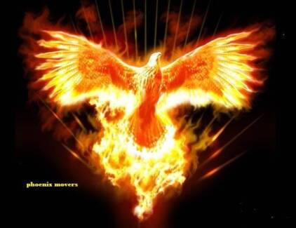 Phoenix movers Malvern East Stonnington Area Preview