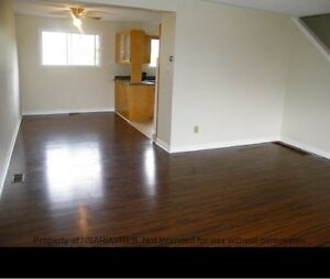 Newly Renovated Semi-Detached House for Rent