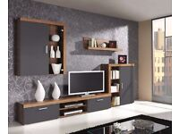 Wall unit (TV stand, cabinets, shelf)