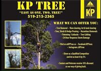 Tree Removal/Care