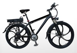 Trillium-Temagami-Mountain Electric Bicycle for sale