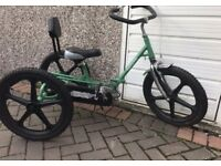 Special needs trike (Theraplay TMX Trike)