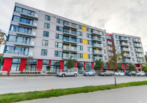 False Creek Apartment for Rent