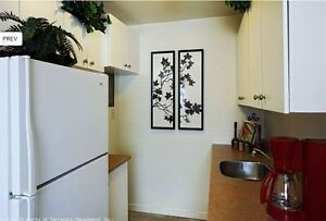 Two Bedroom: Fully renovated, near Wortley Village and Downtown London Ontario image 7