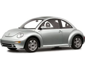 WANTED - SILVER GREY BEETLE for PARTS CAR