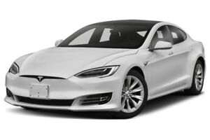 Stay at home volunteers wanted to help mine PGs first Tesla