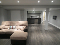 Finished basement handyman work