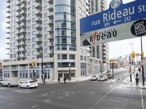 **242 Rideau - Heart of Downtown - 1 Bedroom Condo - PARKING**