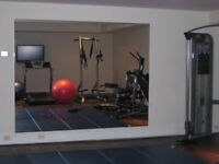 Gym mirrors stuff for sale gumtree
