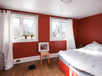 Renovated Student Rooms Available Inclusive 8 month Lease