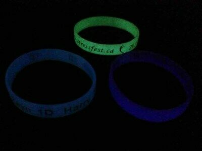 Glow Wristbands Bulk (100pcs/lot Custom Debossed Color Filled Wristband Glow In The Dark)