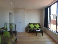 BEAUTIFUL NEW STUNNING SPACIOUS 1 BEDROOM FLAT VERY NEAR TUBE, TRAIN, 24 HOUR BUSES & HIGH RD SHOPS