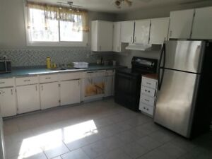 Basement Unit Located Minutes to HWY 401 and Downtown