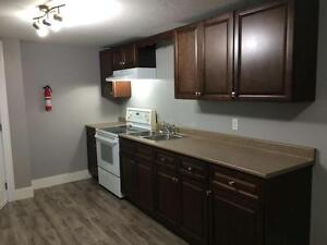 1 Bedroom extra large Full Basement Apartment