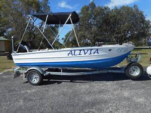 Aluminium Boat, Mercury Motor , Water Snake & Marine Trailer Dungog Dungog Area Preview
