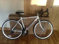 Woodworm bike gt Boardman hybrid