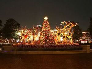 STAY FLORIDA ALL WINTER ! VISIT DISNEY ALL THEME PARKS, BEACHES
