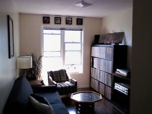 Two Bedroom Downtown Apartment