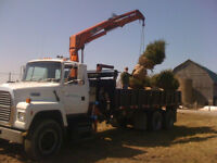Hiab Crane with 22' Flat Deck Dump  for Hire