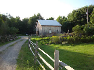 Farm or house with land