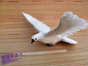 Je recherche des colombes artificielle