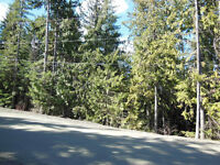 4 Acre Lot Close to Shuswap Lake