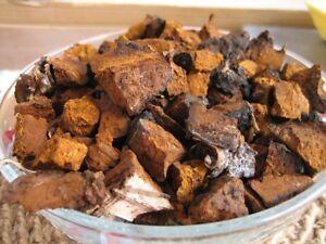 Chaga Mushroom Chuncks and Powder For Sale!