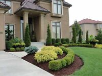 * COUPON - Spring & Yearly Cleanup Packages. Lawn + Landscaping