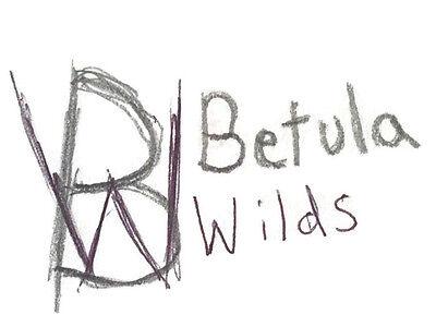 Betula Wilds